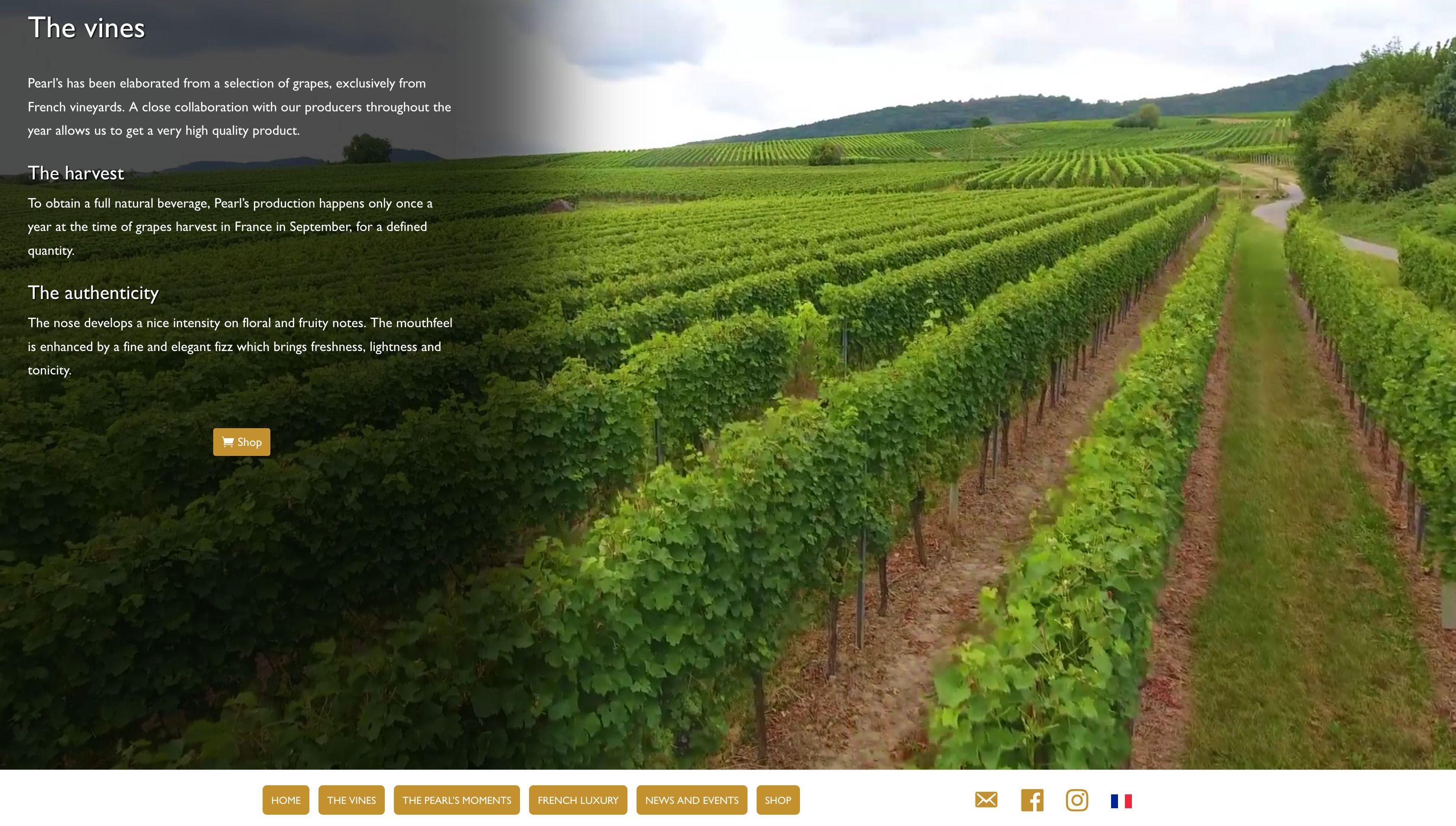 Pearls-de-France-Vigne